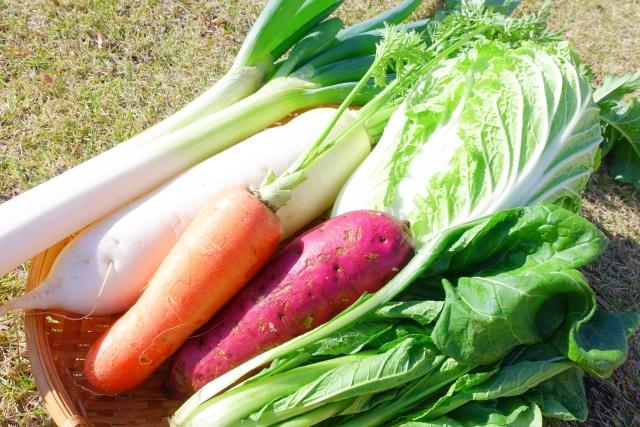 鍋,野菜,洗う