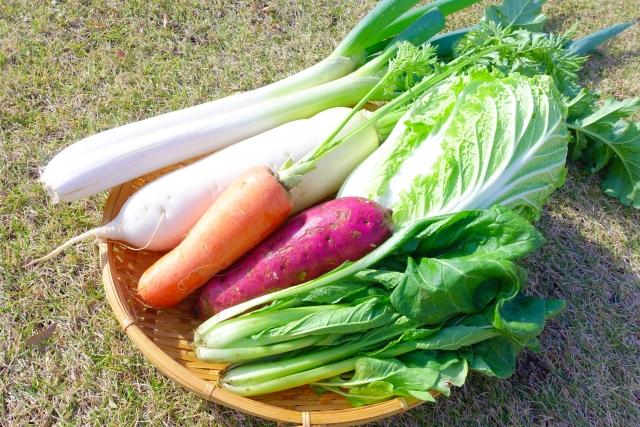 野菜 切ってから洗う