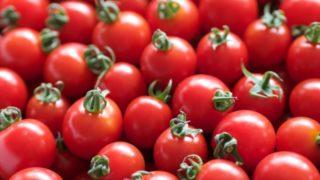 プチトマト,黒い斑点