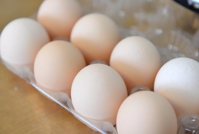 卵,腐るとどうなる