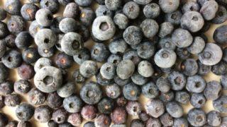 冷凍ブルーベリー,食べ過ぎ